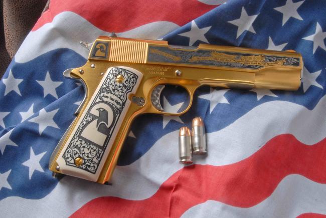 Second-Amendment-gun.jpg
