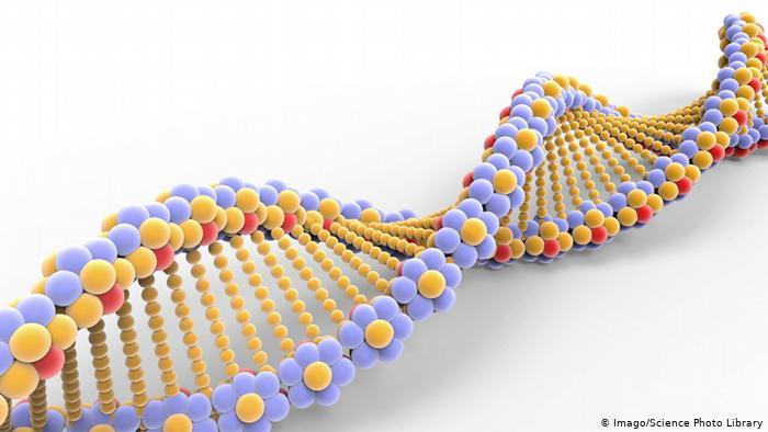 DNS DNA Illustration Molekül (Imago/Science Photo Library)