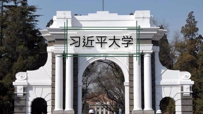 習近平的「經濟國師」之一鄭永年,傳出發起連署,提議將習母校清華大學更名為「習近平大學」(翻攝自Change.org網站)
