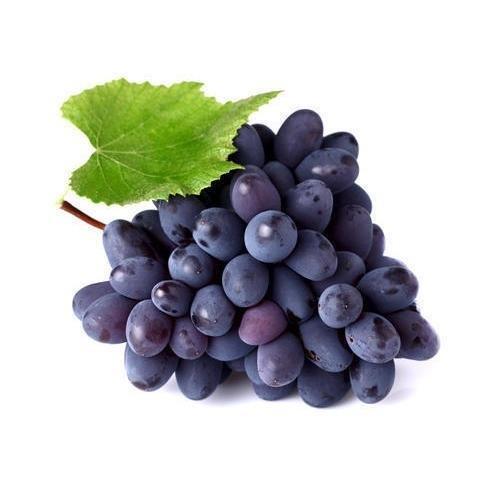 Grapes_1_1024x.jpg