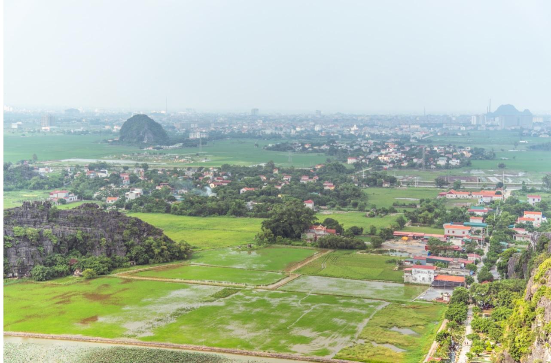 由於以往的稻米進口國泰、緬、越供應有限,中共別無選擇,只得向印度收購。圖為越南水稻田。圖:謝德瑾/攝(資料照片)