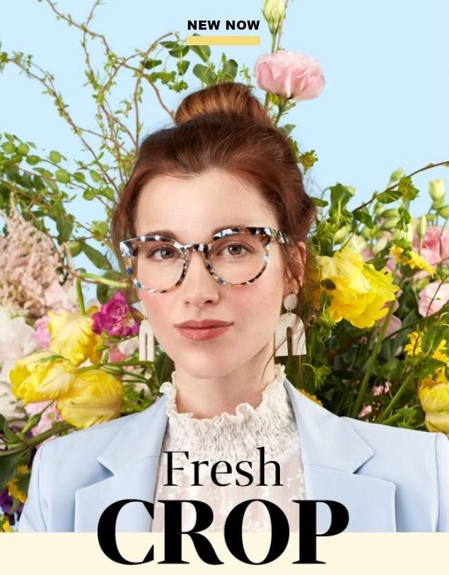 新型花色款眼镜