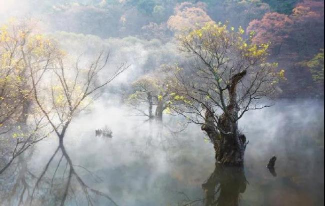 WeChat Image_20210720125528.jpg