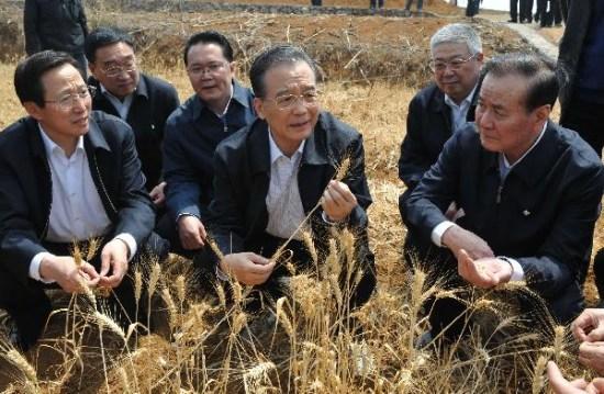 (图文)温家宝赴贵州考察抗旱救灾 神色焦虑