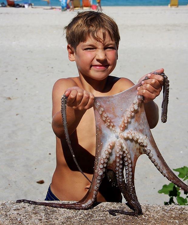 """美国夫妇吓坏了 吃了全球第二只""""六脚章鱼"""""""