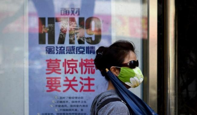 """中国的禽流感病毒可能""""死灰复燃""""(图文)"""