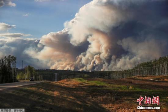 加拿大林火面积超1500平方公里  或翻1倍