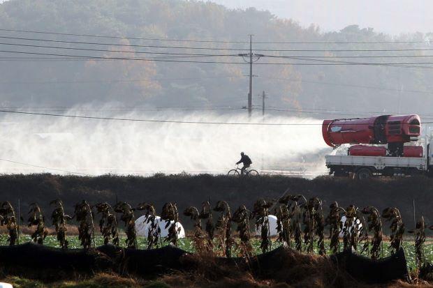 韩国证实爆发H5N6禽流感疫情 加强隔离