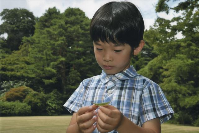 日本皇室生儿子为啥困难?真相很无奈