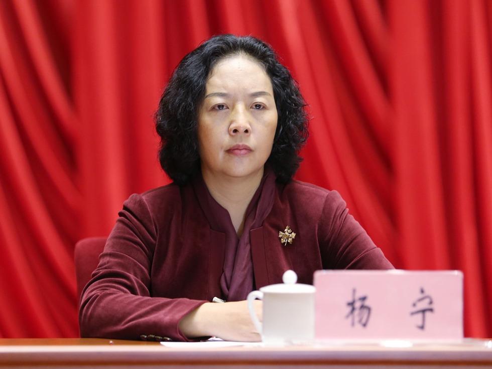 仕途两次创纪录 云南女统战部长吸睛