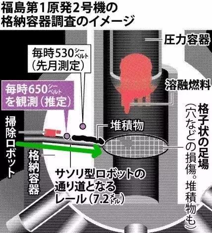 """日本""""核毒""""有多严重?在日华人这么说"""