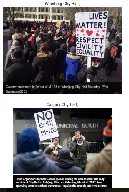 加拿大穆斯林要称霸?多地爆发游行
