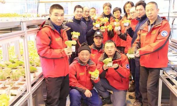 中国人这个习惯,外国人很羡慕:到哪都饿不死,可惜学不会