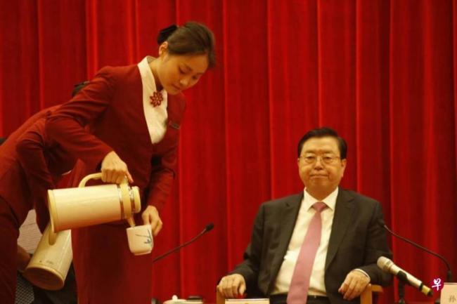 张德江否定香港三权分立 言论引泛民炮轰