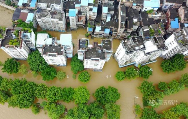 广西柳州半月3次被淹 民众街头撒网捕鱼