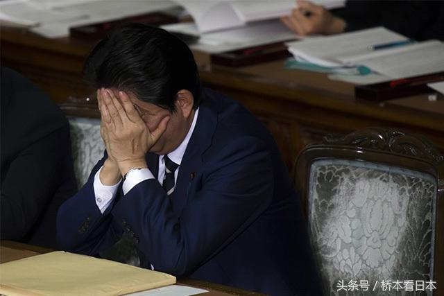 """安倍与川普终于成为""""难兄难弟"""""""
