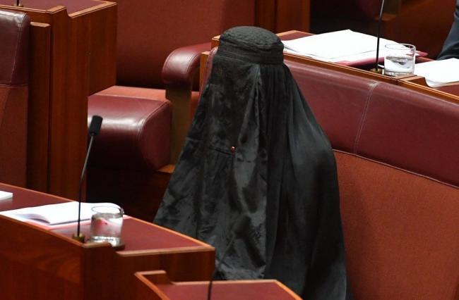 澳洲女参议员竟然穿这个进议会