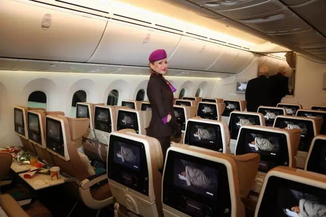4人将炸弹藏行李   阴谋炸毁航班