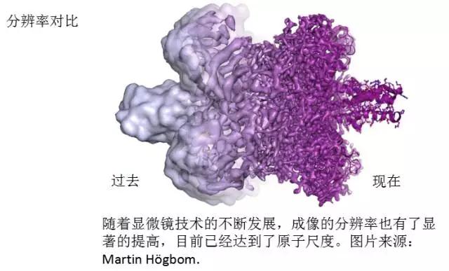 这就是诺贝尔化学奖得主的简历 看后能笑背过气去