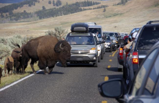 美国最受欢迎的17国家公园 门票将大涨