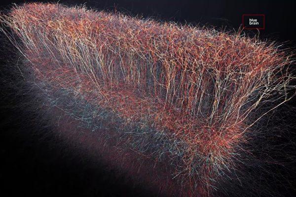brain-nervenetwork-01-600x400.jpg
