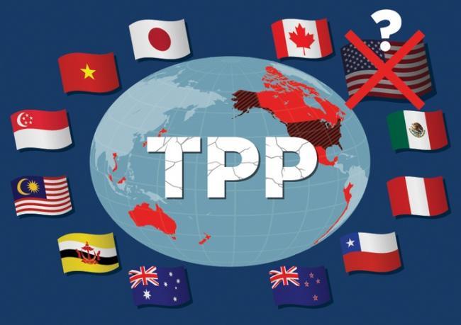 TPP变CPTPP 中国表示不会越过美国办事