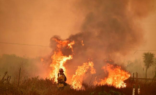 野火烧过来 好莱坞一线女星被令撤离豪宅