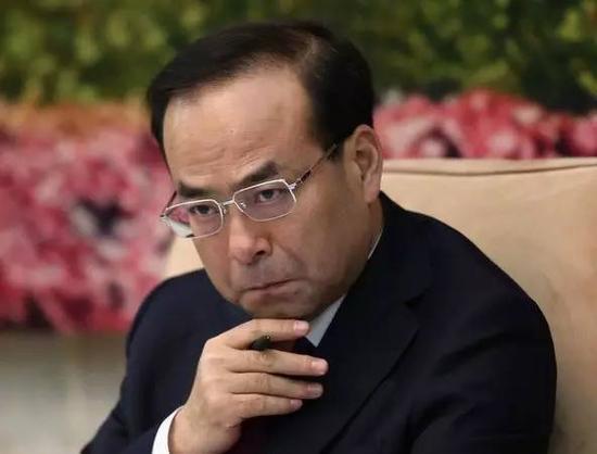 孙政才被最高人民检察院立案侦查