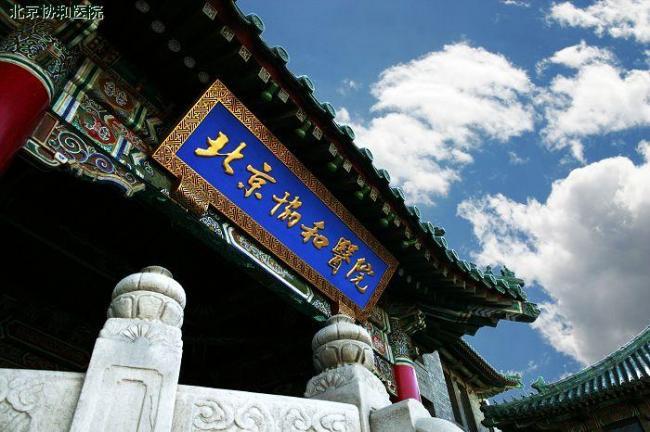 Centennial-Olympic-Park-Xmas7.jpg