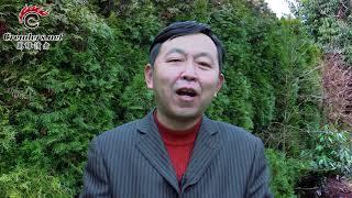 世界被一个11岁女孩骗了,华人没脾气?