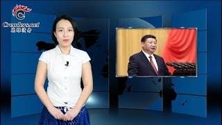 不做哑裔华人周末大游行 中国律师遭抄家