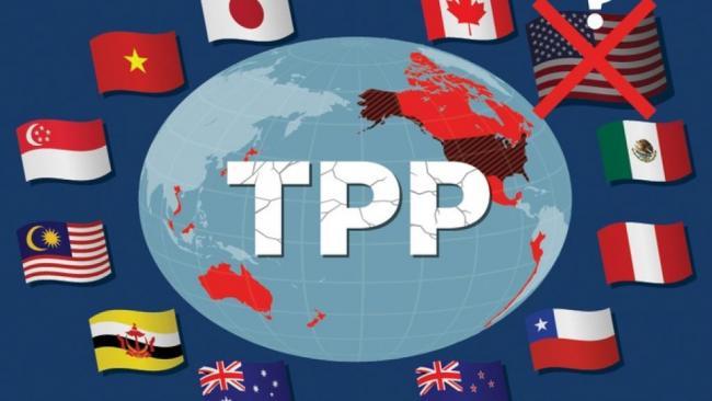 TPP真的起死回生了!11国定3月智利签字