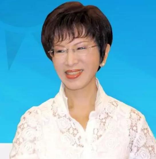 洪秀柱参选台北市长的10个理由