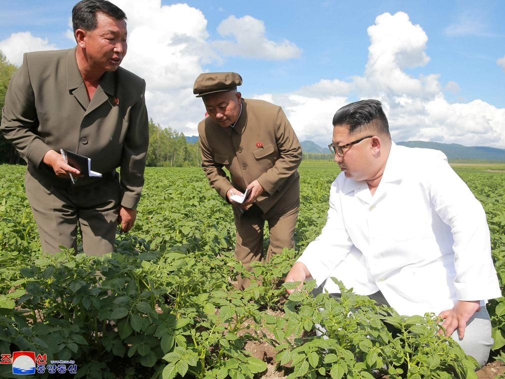 """""""朝鲜去核路线完全取决于中美间的意志"""""""
