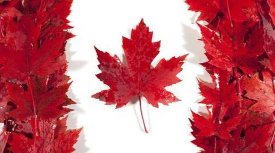 对冲美国贸易壁垒 加拿大思考应变之策