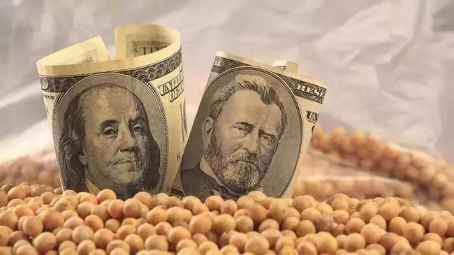 美国大豆价格跳水 市场被这些国家抢走