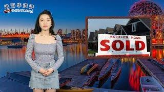 打击买房逃税 BC省又出台新政9月起实施(视频)