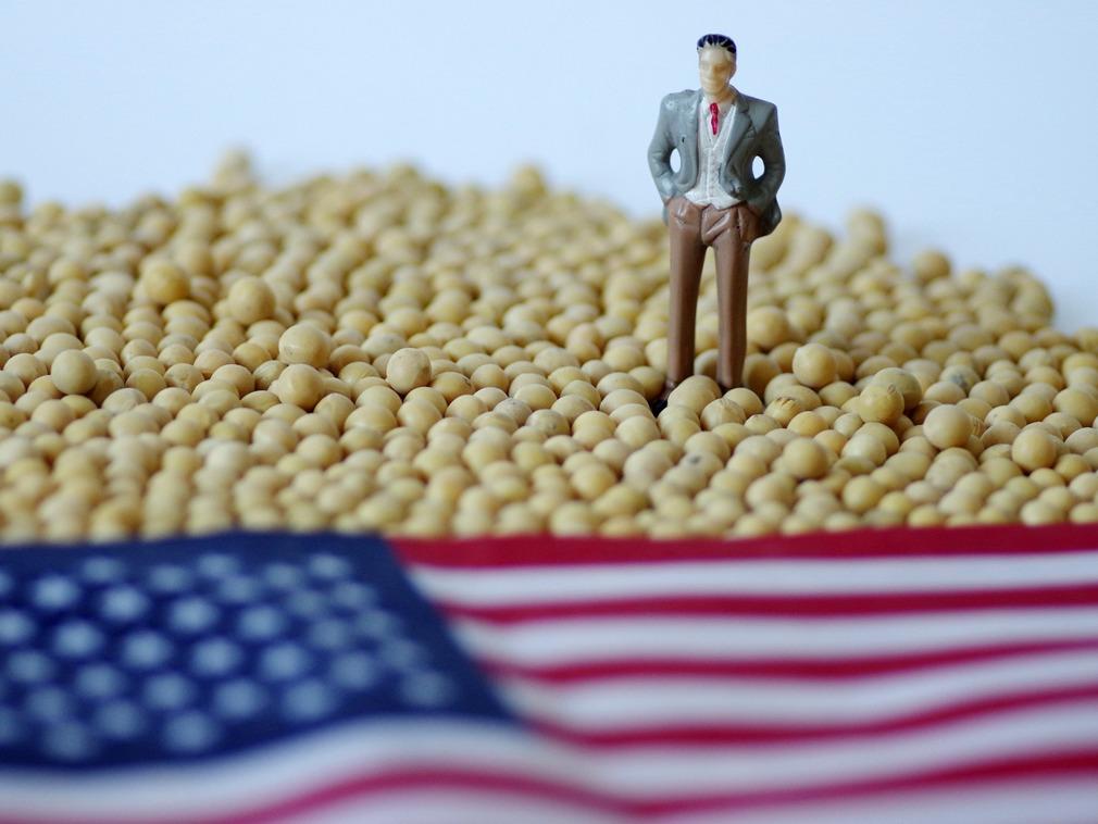 贸易战困局下 俄罗斯供地助中国种大豆