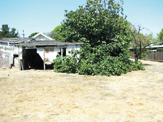 这是硅谷南湾卖490万的房子 你愿意买吗?