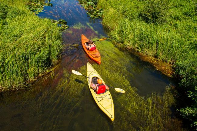"""在金色溪流漂游运动起来 很""""加拿大"""""""
