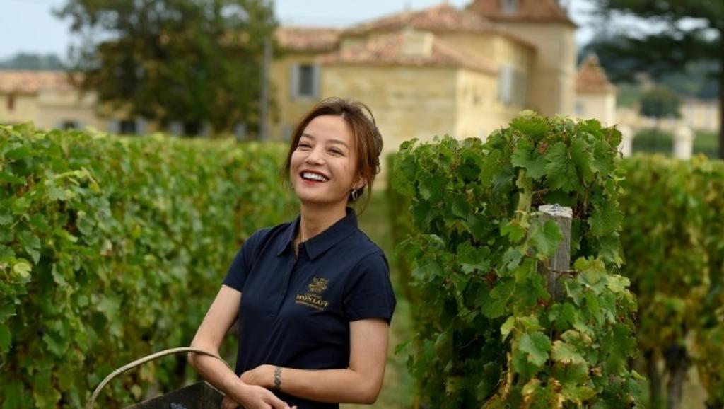 赵薇的葡萄熟了 范冰冰跟她比差在哪?