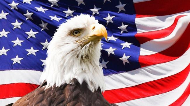 eagle-219679_960_720.jpg