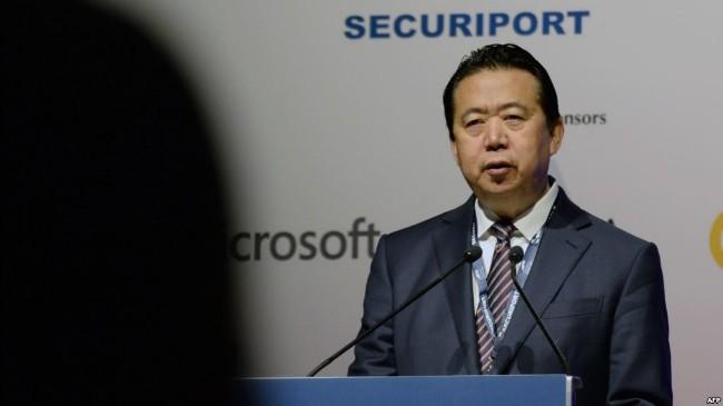 官方宣布   孟宏伟被开除出中国政协