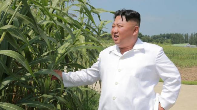 金正恩有前列腺毛病?韩国情报院3D分析