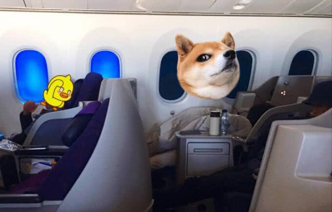 王菲被偶遇飞机上大睡 小S睡姿更大胆