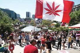 大麻合法化了,我们应该怎样做?