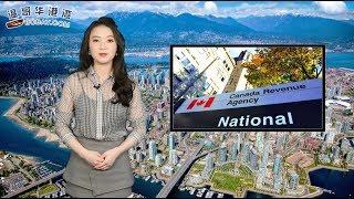 华裔炒 3个楼花获利30万元,被税局追税(视频)