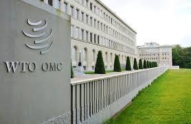 WTO改革 中美争执不下 互不相让