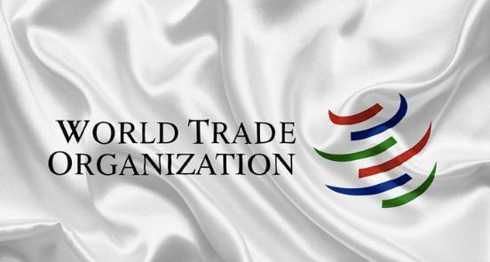 中国支持WTO改革 但禁试图对华施紧箍咒