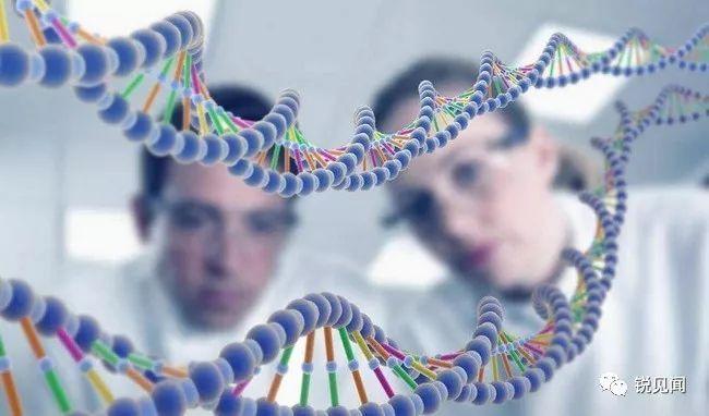 国际生物遗传领域开始拒收中国留学生